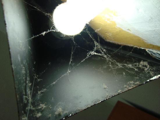 ميلتونز بيتش ريزورت: A spiders nest or a lamp?