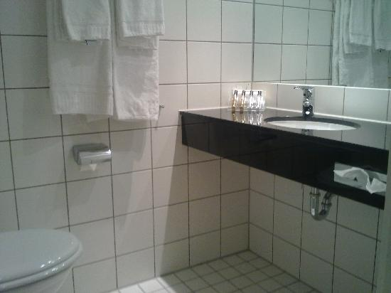 Scandic Hell: Bathroom
