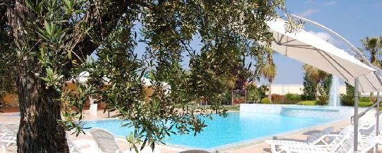 Orsogna, Itália: Olive tree