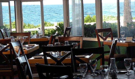 The Mediterranean Gourmet: Mediterranean Gourmet, Dinner Setup