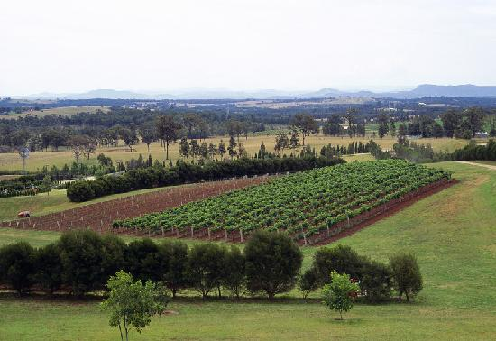 Loksha Tours: Hunter Valley
