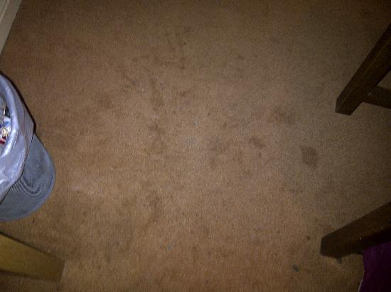 The County Hotel: Disgusting carpets!
