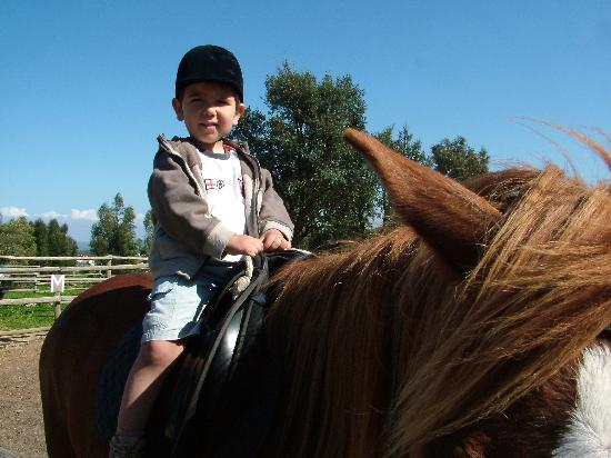 Horseriding at Naturarte Campo