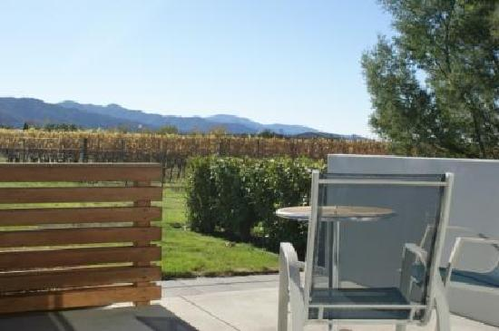 Marlborough Vintners Hotel: Looking to the vines