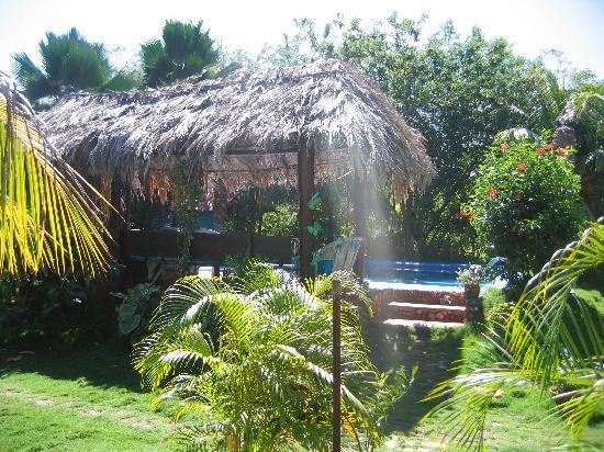 Finca Maribel : Jardin et piscine