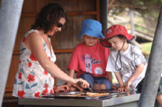 Lake Pertobe Adventure Playground: Great FREE BBQ's