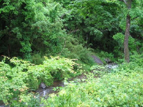 Onyado Nakata : 外風呂からの景色