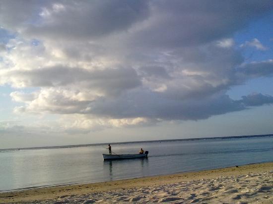 Пляж в 100 м от Alphavilla
