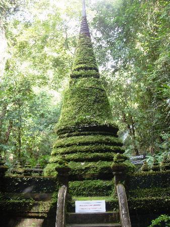 Namtok Phlio National Park : Chedi