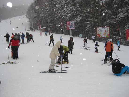 Vila Vitalis: Predeal ski site - small slope