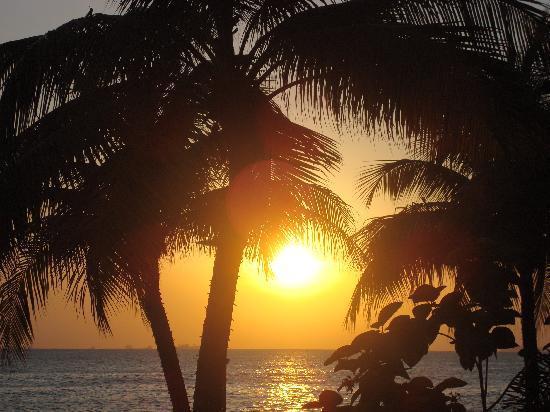 هياة ريجينسي ترينيداد: amazing sunset view from the hotel