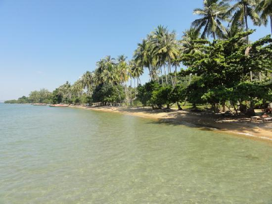Koh Tonsay (Rabbit Island) : Plage principale