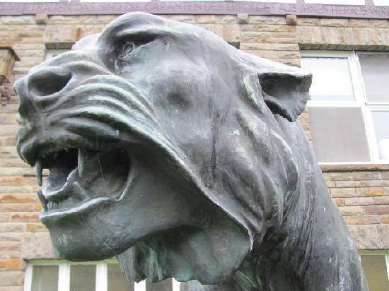 Tiger-Gruppe: 8