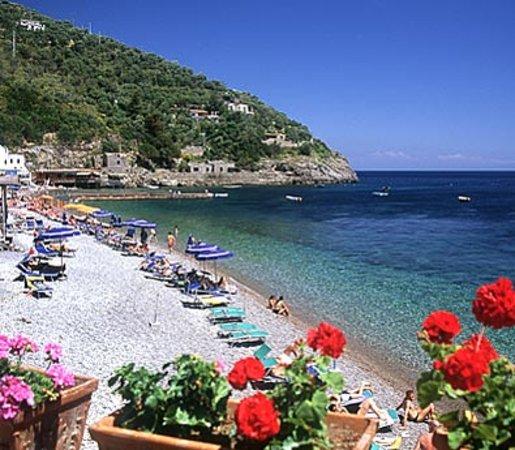 Villaggio Resort Nettuno: The beach