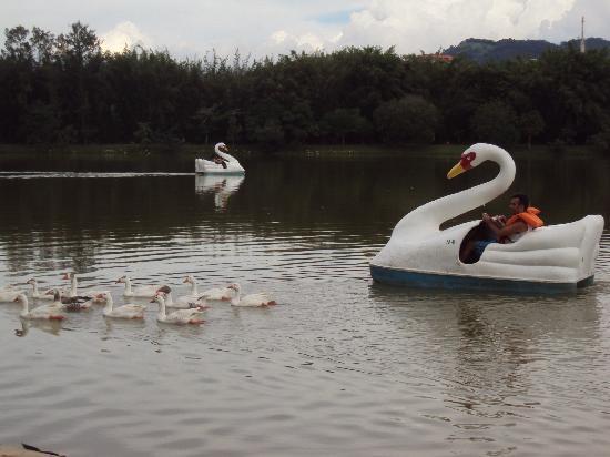 Granada Hotel: Parque das águas. A natureza ao seu dispor.
