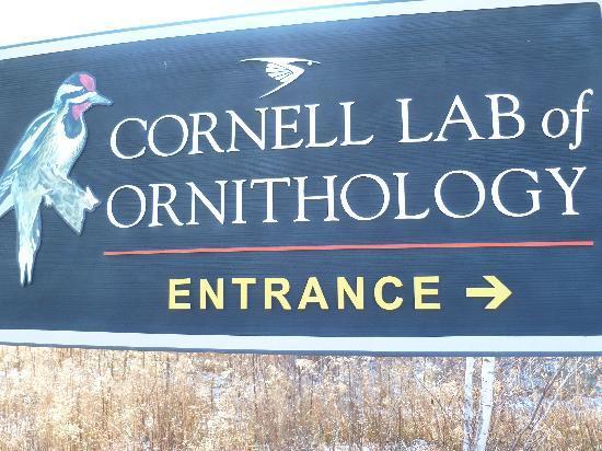 Cornell Lab of Ornithology: entrance sign