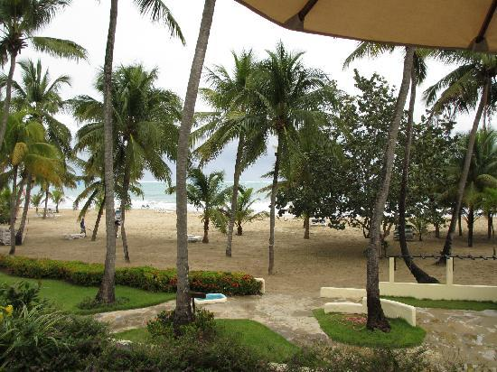 Cabarete Palm Beach Condos: Beach view from balcony
