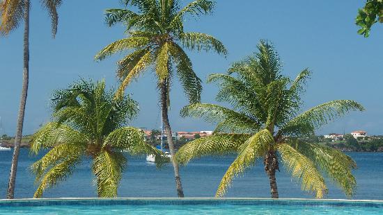 The Grenada Chocolate Company: Grenada Island Paradise