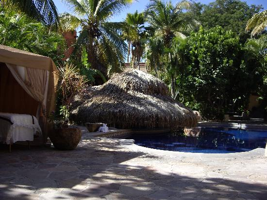 Tropicana Inn: The Tropicana pool area