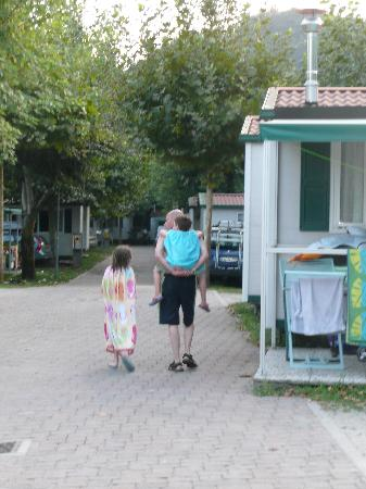 Camping Continental: Avenue towards our mobile