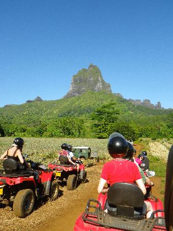 Villa Corallina Moorea: One of our exciting excursions on Moorea: an ATV trek of the island