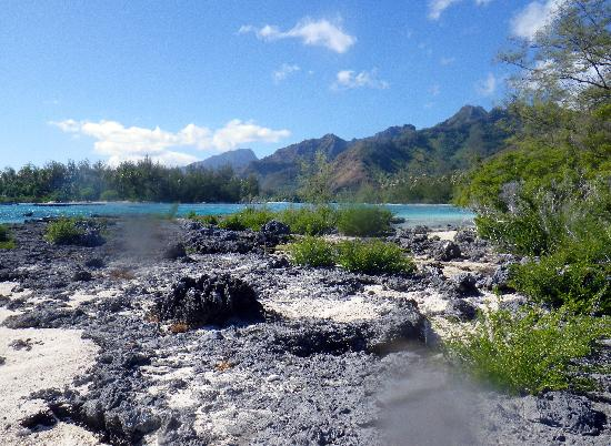 Villa Corallina Moorea: A beautiful view from one of our walks around the motu