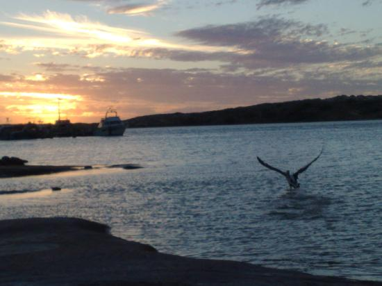 Kalbarri Anchorage Caravan Park: On the banks of the river before sunset