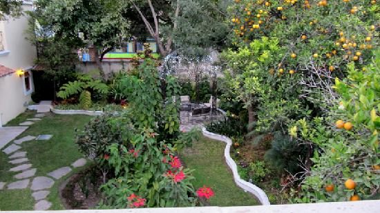 Hotel Villa San Francisco: The garden