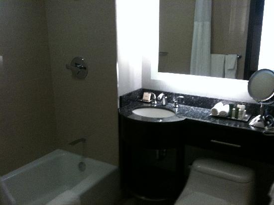 Washington Hilton Standard Bathroom