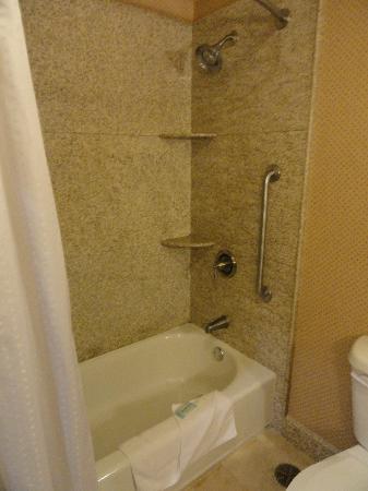 Holiday Inn Express Hotel & Suites Woodland Hills: bathroom