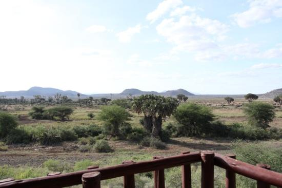 Samburu Simba Lodge : view from the lodge