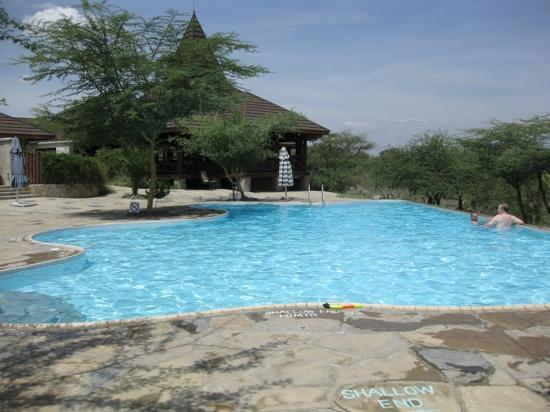 Samburu Simba Lodge : the pool