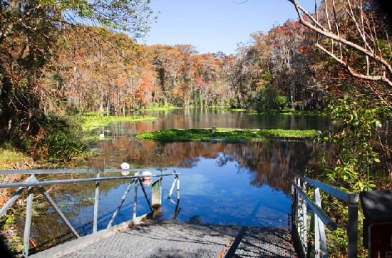 Sleep Inn & Suites Ocala - Belleview: The Ocala area has a wealth of scenic lakes