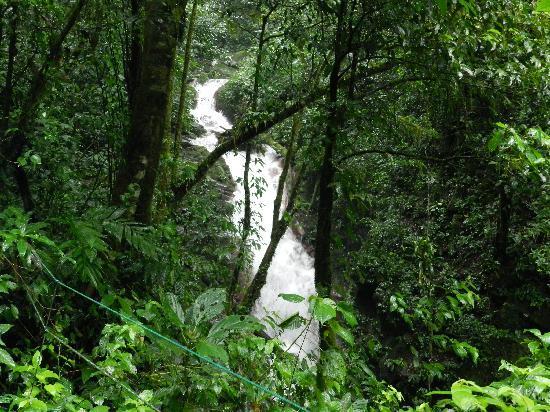 Papagayo Vargas Tours: Miravalles waterfall tour.