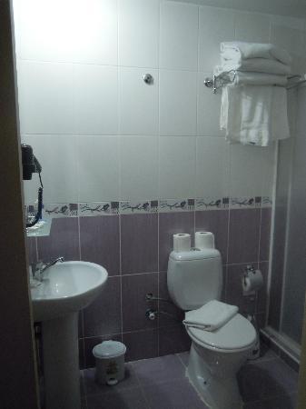 Hotel California Istanbul: Clean bathroom