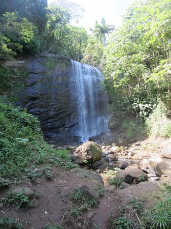 Royal Mount Carmel Falls Photo