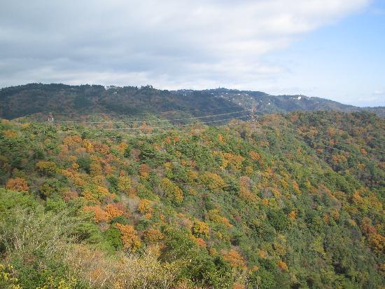 Mt. Rokko: オテル・ド・摩耶からの六甲山