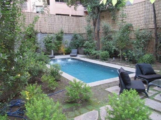 Lastarria Boutique Hotel : The pool