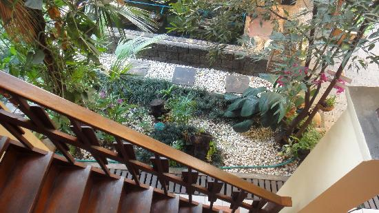 Cool Guesthouse: The cozy garden where we have 2 love birds