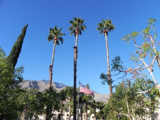 Rick's Desert Grill: Palm Springs