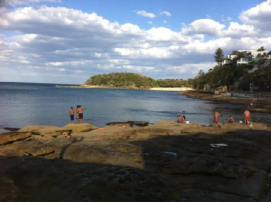 Manly Beach Bed And Breakfast Reviews