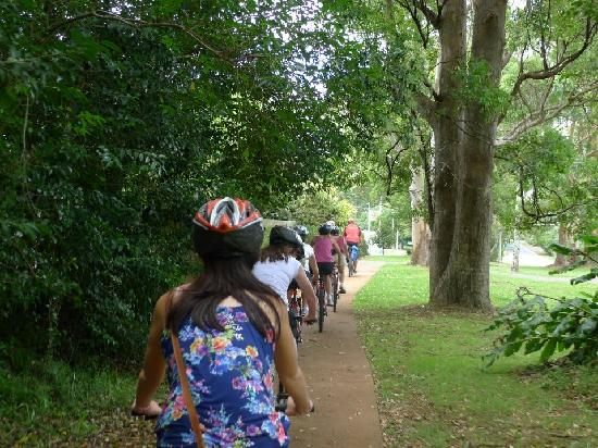 Bunyip Bike Tours: One of the many trails!