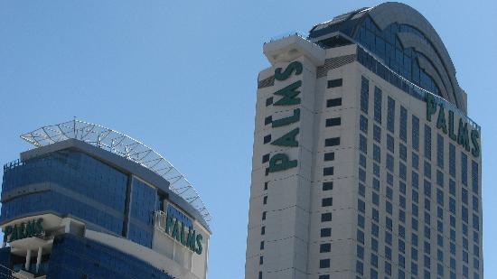 Casino at the Palms Resort