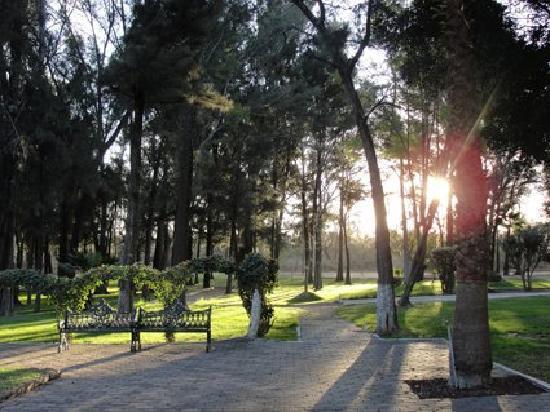 Mision Comanjilla: Andador de áreas abiertas.
