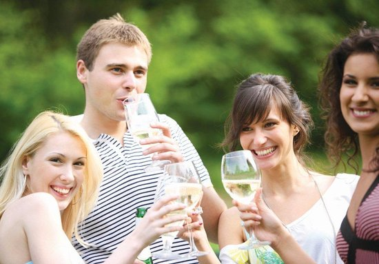 Taste The South Wine Tours