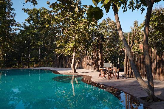 Satpura National Park, India: Reni Pani - Poolside
