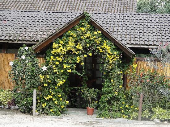Hotel Monte Selva: Recepción