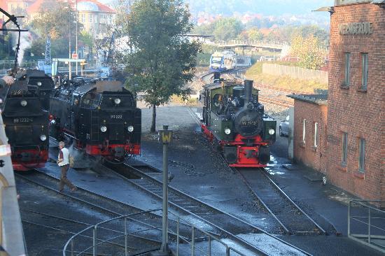 Harzer Schmalspurbahnen: Betriebswerk Wernigerode