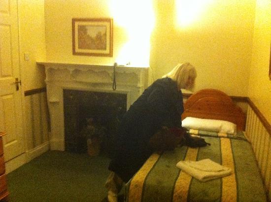 Gatwick Belmont Hotel & Restaurant: Twin room again