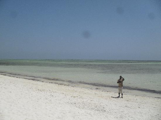 Ora Resort Watamu Bay: La spiaggia dell'Hotel